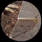 Damaged and Cracked Sidewalk Repair